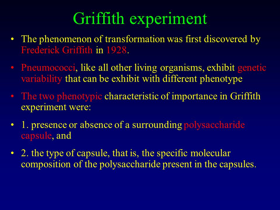 Griffith experiment The phenomenon of transformation was first discovered by Frederick Griffith in 1928.
