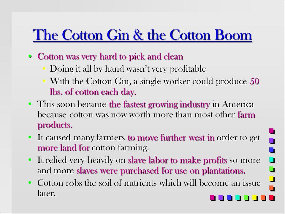 The Cotton Gin & the Cotton Boom