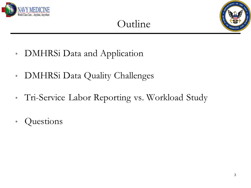 Outline DMHRSi Data and Application DMHRSi Data Quality Challenges