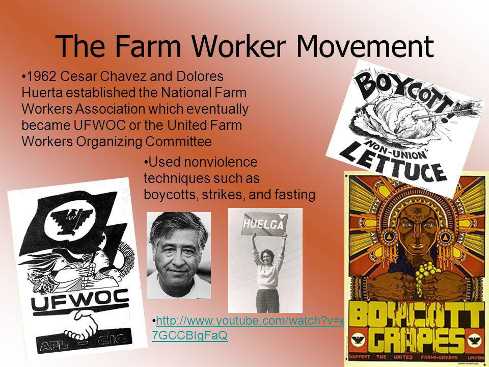 The Farm Worker Movement