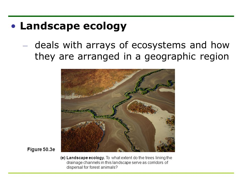 Landscape ecology deals with arrays of ecosystems and how they are arranged in a geographic region.