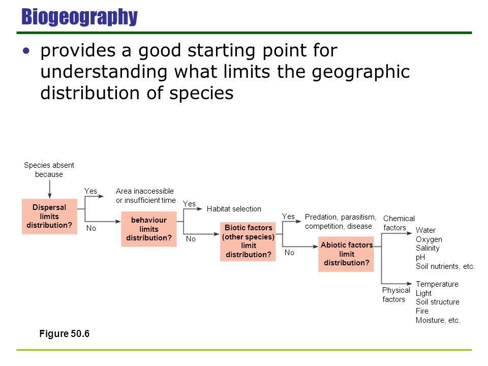 Biogeography provides a good starting point for understanding what limits the geographic distribution of species.