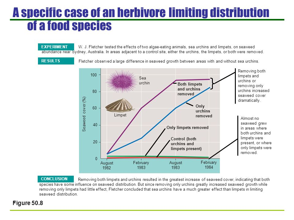 A specific case of an herbivore limiting distribution of a food species