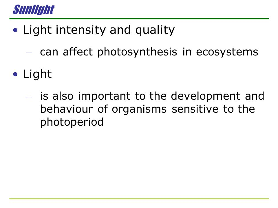 Light intensity and quality