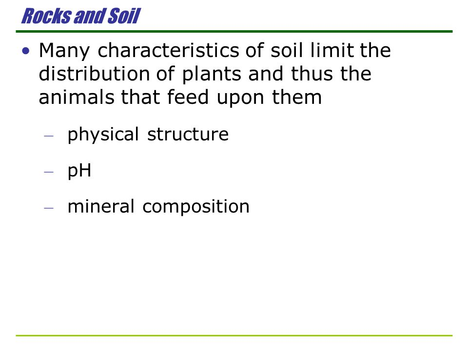 Rocks and Soil Many characteristics of soil limit the distribution of plants and thus the animals that feed upon them.