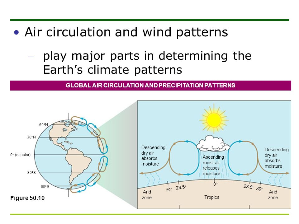 GLOBAL AIR CIRCULATION AND PRECIPITATION PATTERNS
