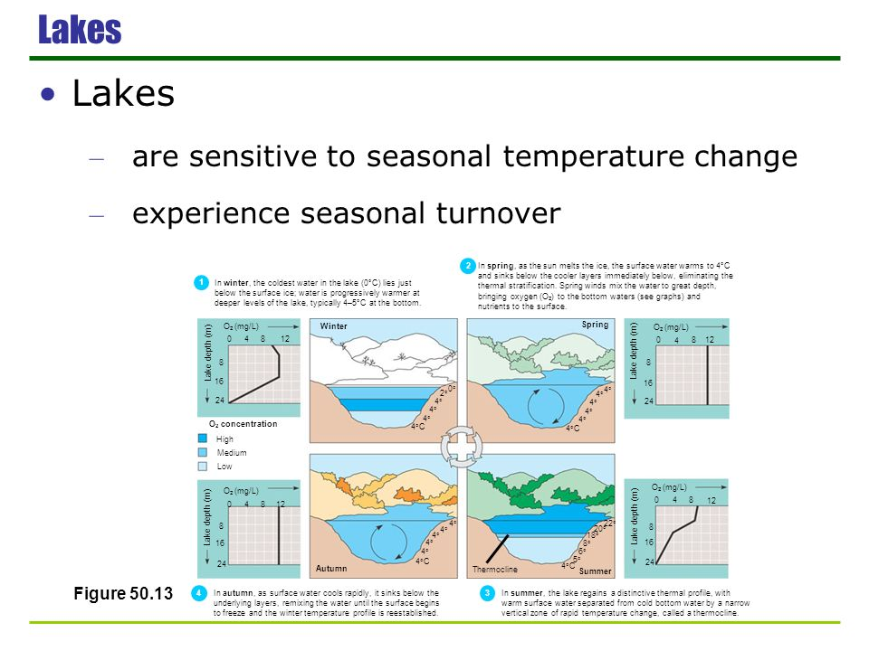 Lakes Lakes are sensitive to seasonal temperature change