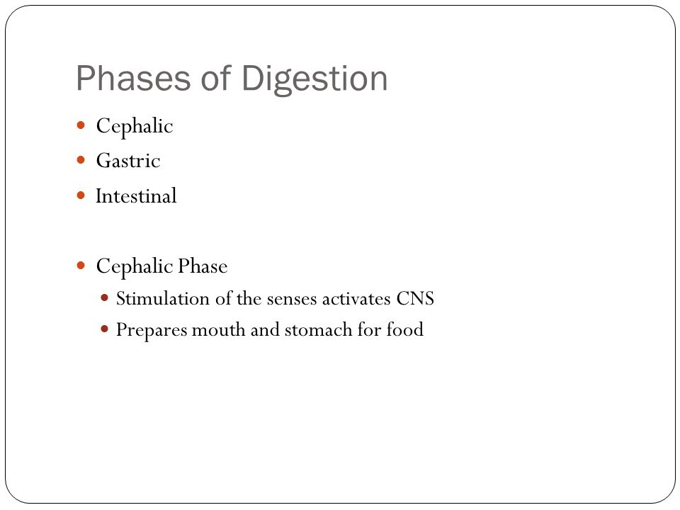 Phases of Digestion Cephalic Gastric Intestinal Cephalic Phase