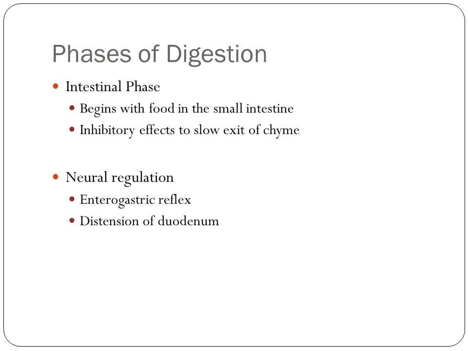 Phases of Digestion Intestinal Phase Neural regulation