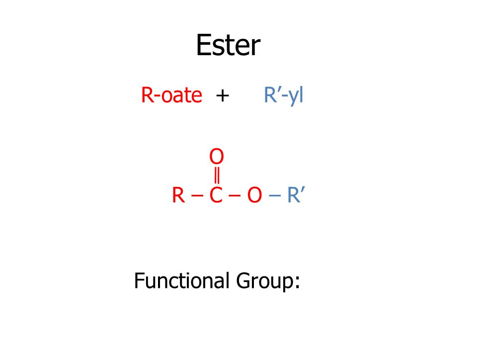 Ester R-oate + R'-yl O R – C – O – R' Functional Group: