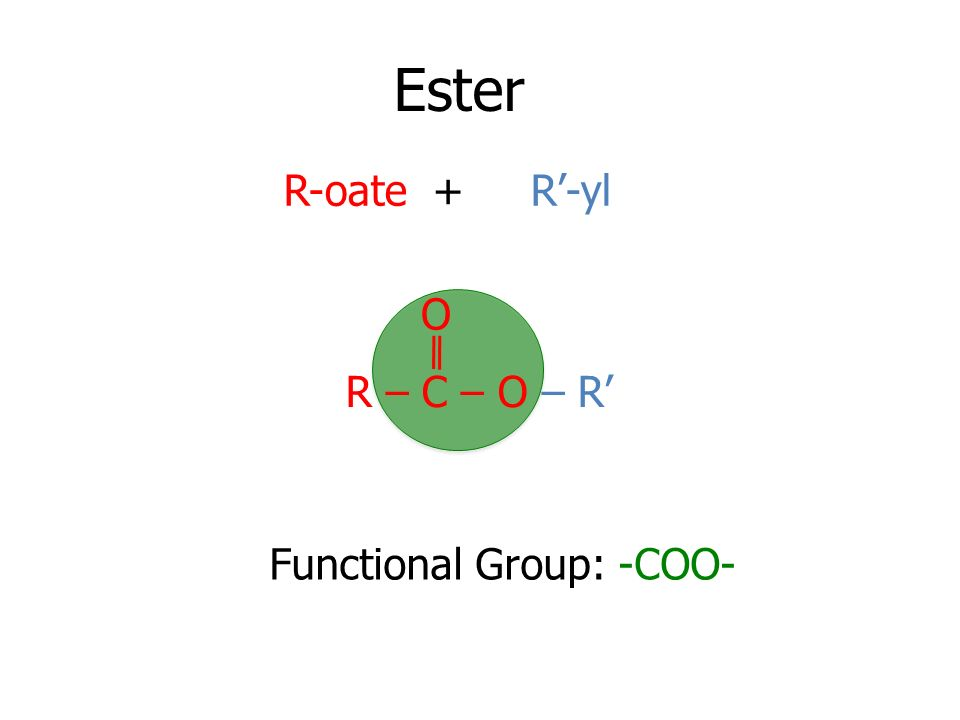 Ester R-oate + R'-yl O R – C – O – R' Functional Group: -COO-