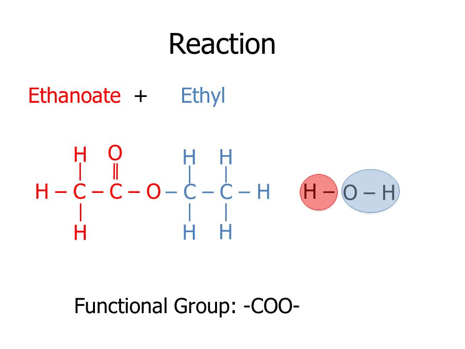 Reaction Ethanoate + Ethyl H O H H H – C – C – O – C – C – H H – O – H