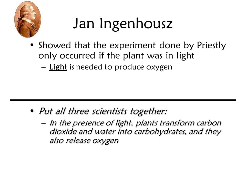Jan Ingenhousz Showed that the experiment done by Priestly only occurred if the plant was in light.