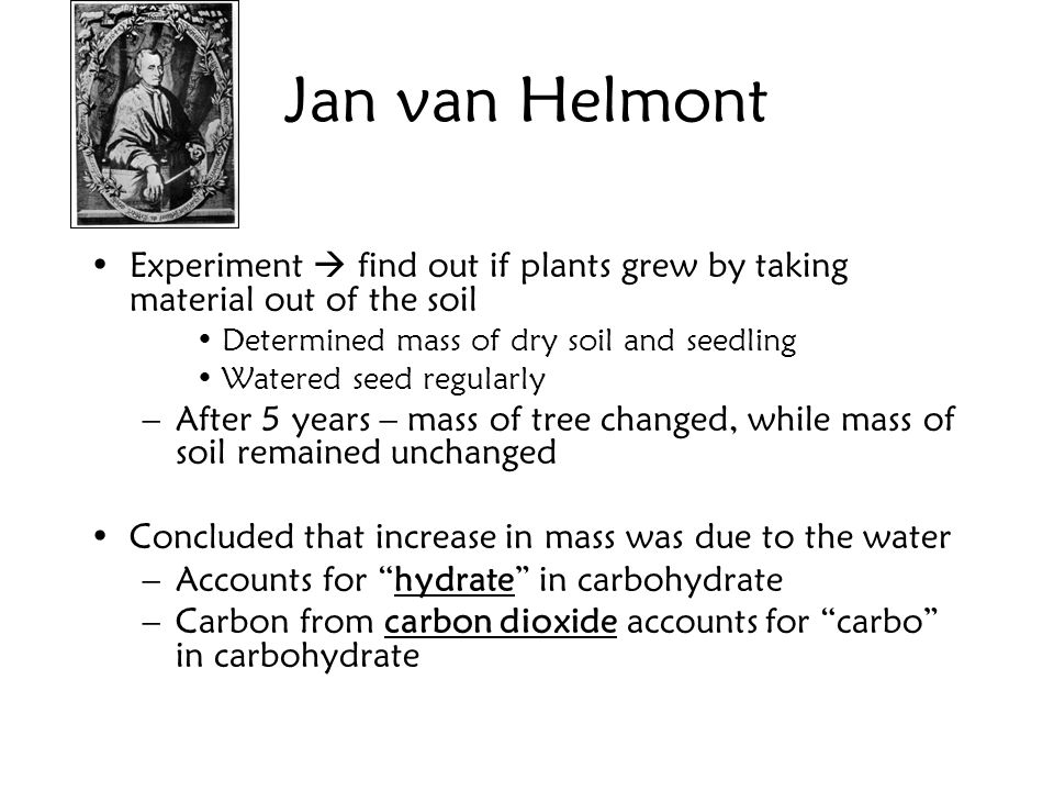 Jan van Helmont Experiment  find out if plants grew by taking material out of the soil. Determined mass of dry soil and seedling.