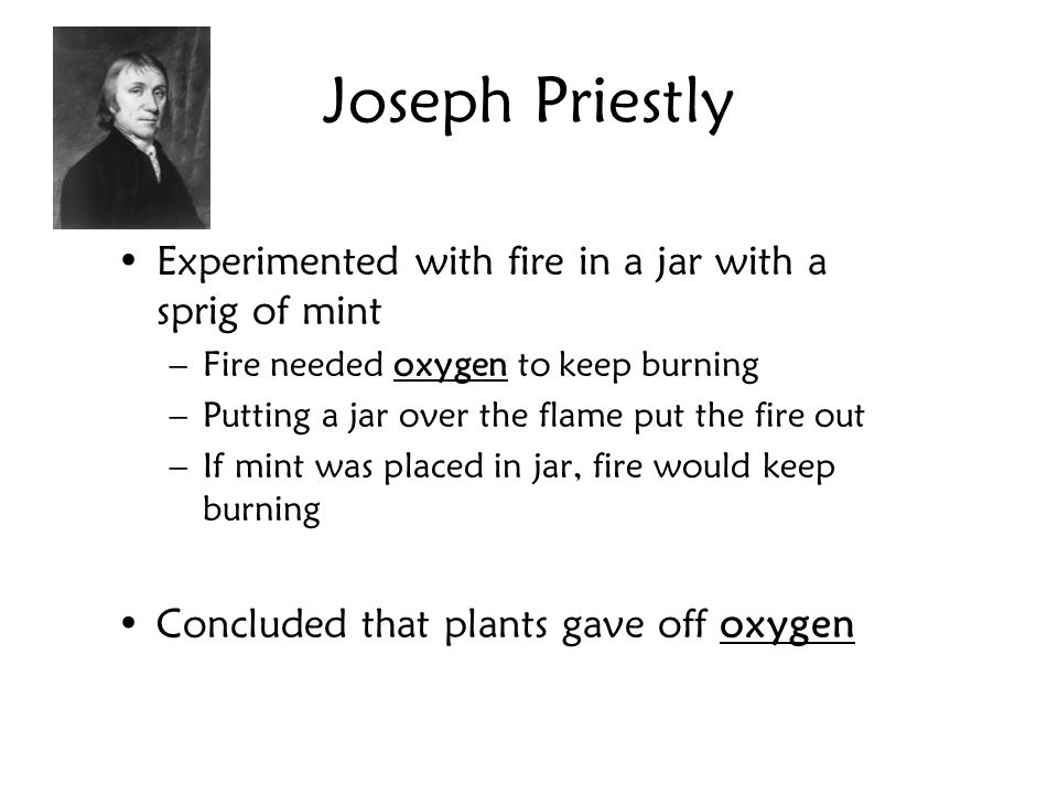 Joseph Priestly Experimented with fire in a jar with a sprig of mint