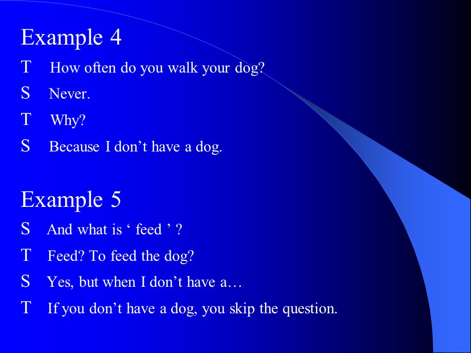 Example 4 Example 5 T How often do you walk your dog S Never. T Why