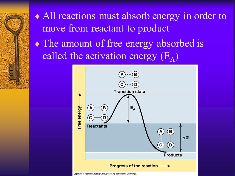 All reactions must absorb energy in order to move from reactant to product