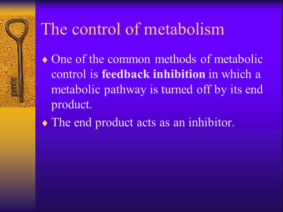The control of metabolism