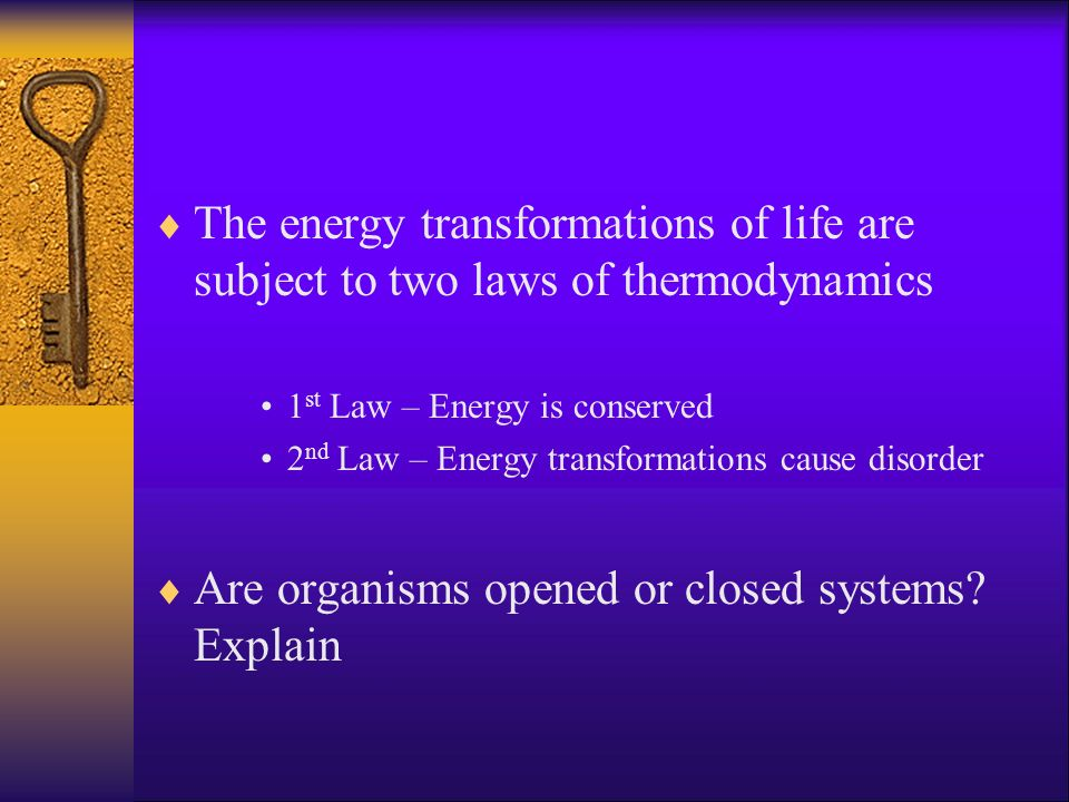Are organisms opened or closed systems Explain