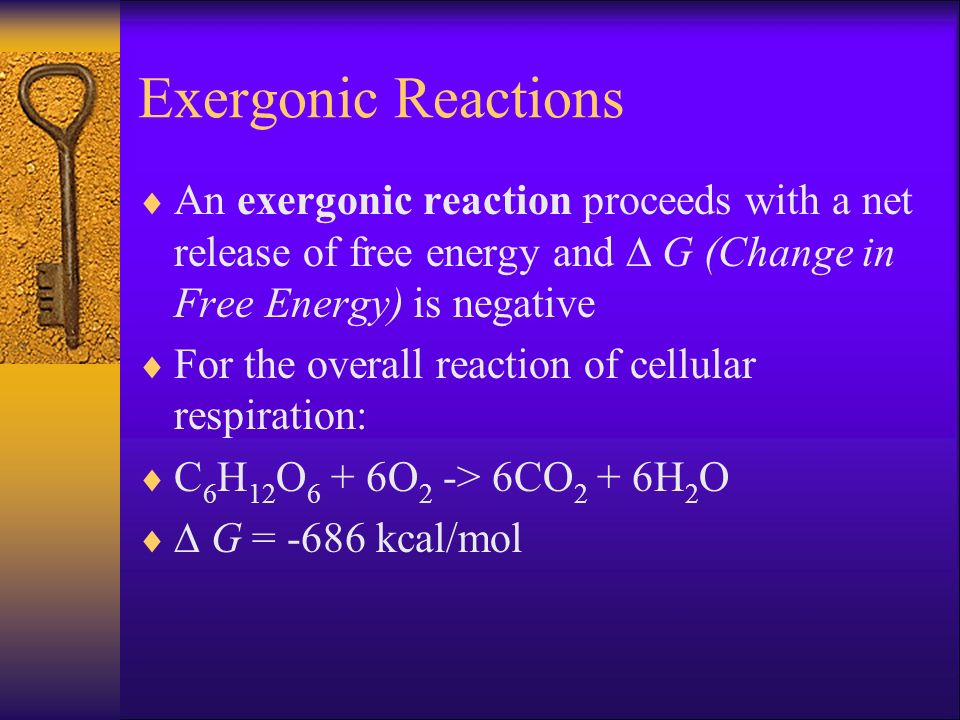 Exergonic Reactions An exergonic reaction proceeds with a net release of free energy and  G (Change in Free Energy) is negative.