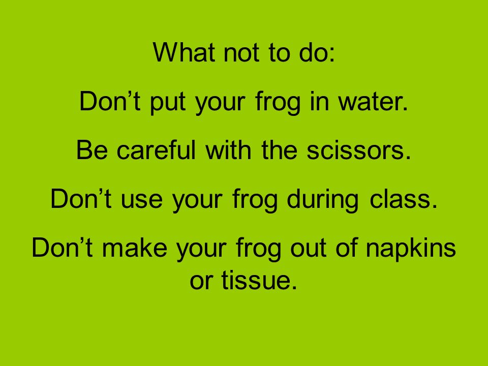 Don't put your frog in water. Be careful with the scissors.