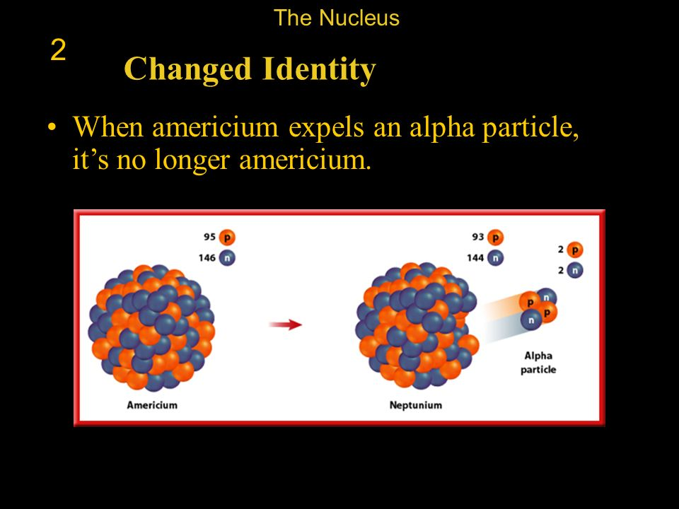 The Nucleus 2 Changed Identity When americium expels an alpha particle, it's no longer americium.