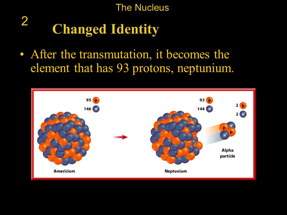 The Nucleus 2. Changed Identity.