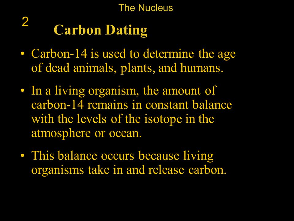 The Nucleus 2. Carbon Dating. Carbon-14 is used to determine the age of dead animals, plants, and humans.