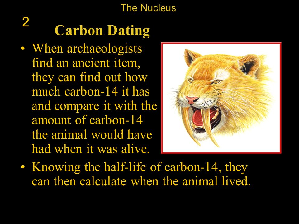 The Nucleus 2. Carbon Dating.