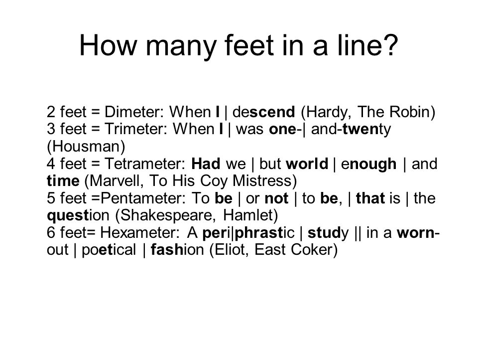 How many feet in a line