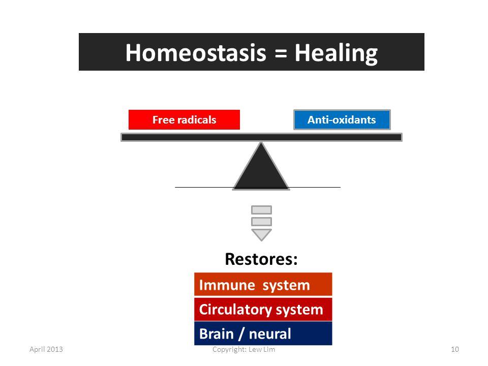Homeostasis = Healing Restores: Immune system Circulatory system