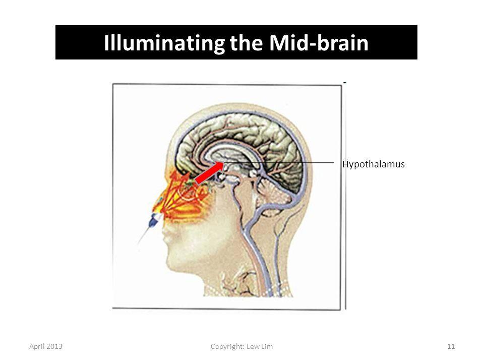 Illuminating the Mid-brain