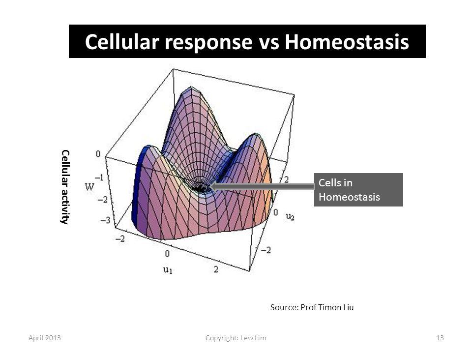 Cellular response vs Homeostasis