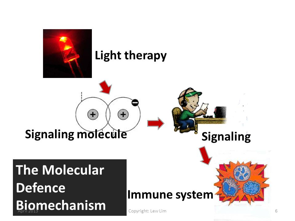 The Molecular Defence Biomechanism