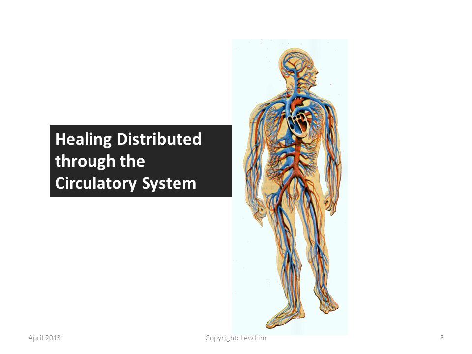 Healing Distributed through the Circulatory System