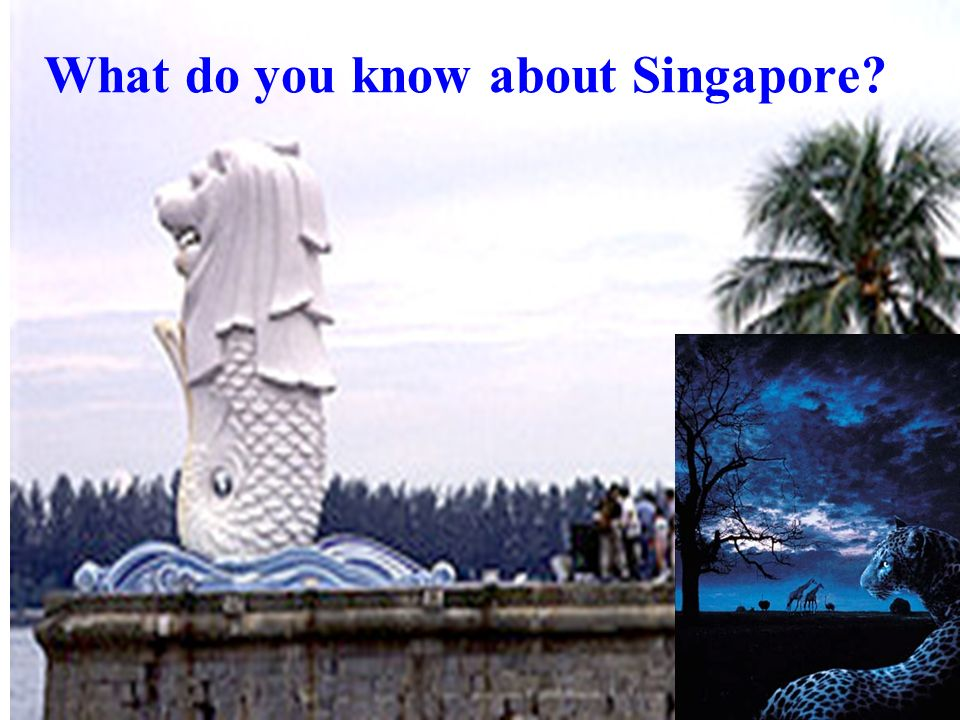 What do you know about Singapore