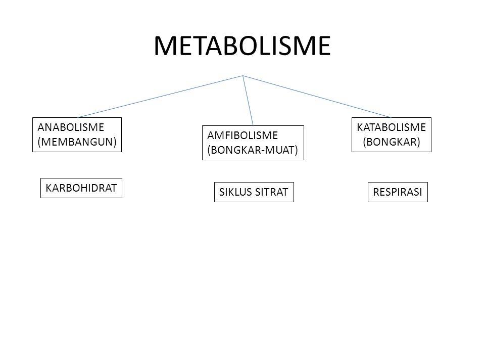 METABOLISME ANABOLISME (MEMBANGUN) KATABOLISME (BONGKAR) AMFIBOLISME