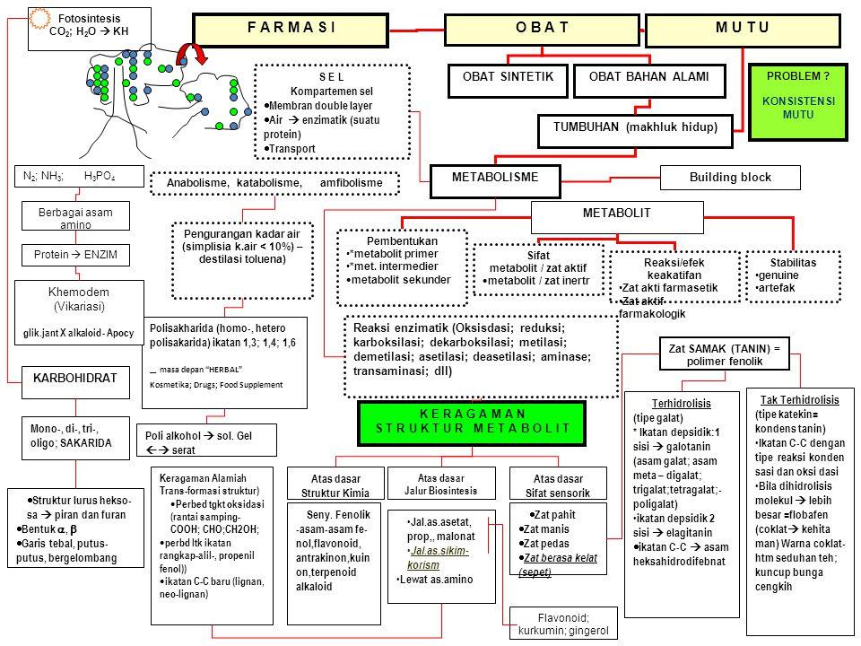 glik.jant X alkaloid - Apocy
