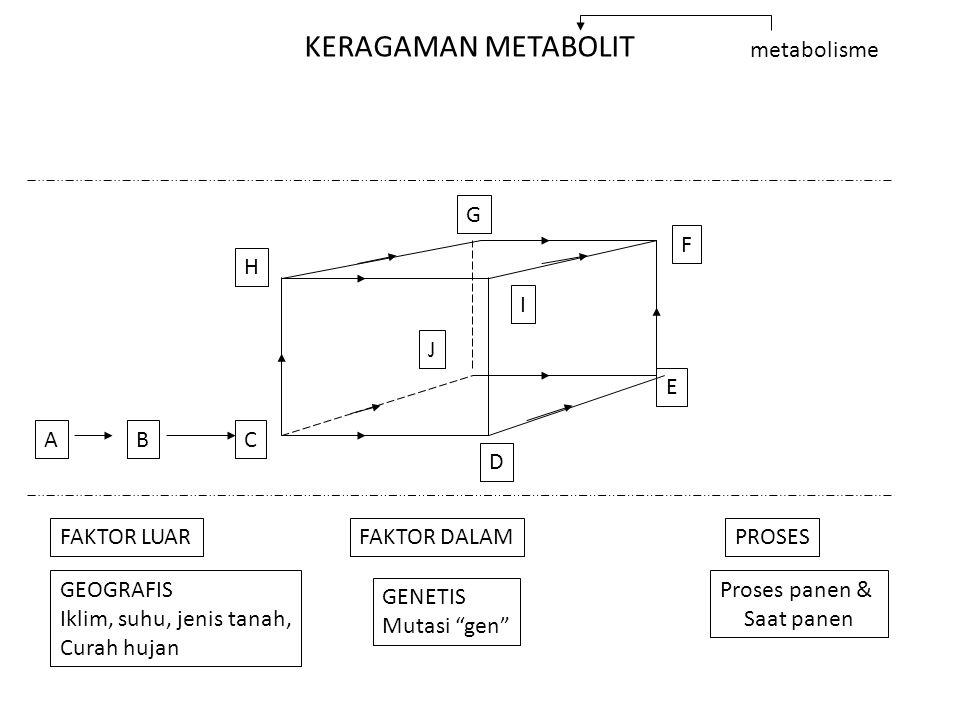 KERAGAMAN METABOLIT metabolisme G F H I J E A B C D FAKTOR LUAR