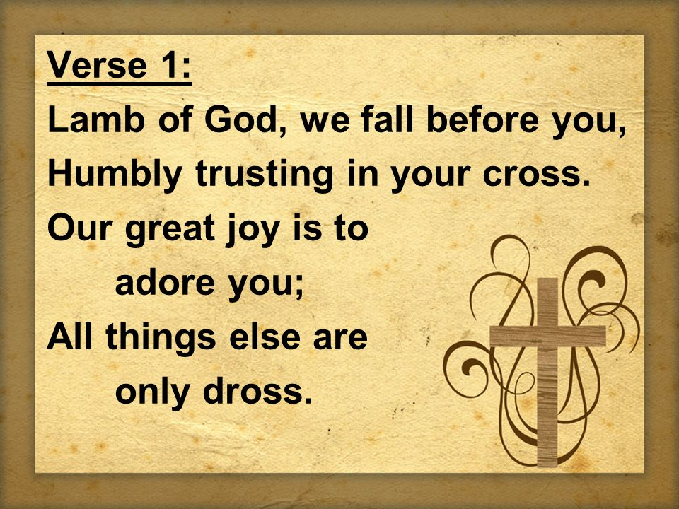 Verse 1: Lamb of God, we fall before you, Humbly trusting in your cross.