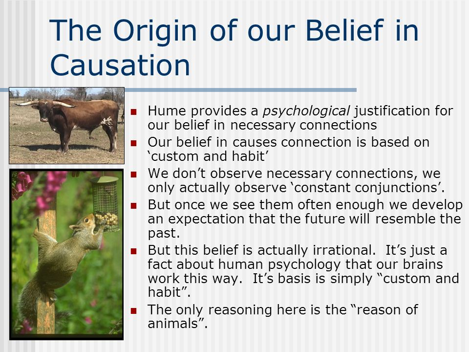 The Origin of our Belief in Causation