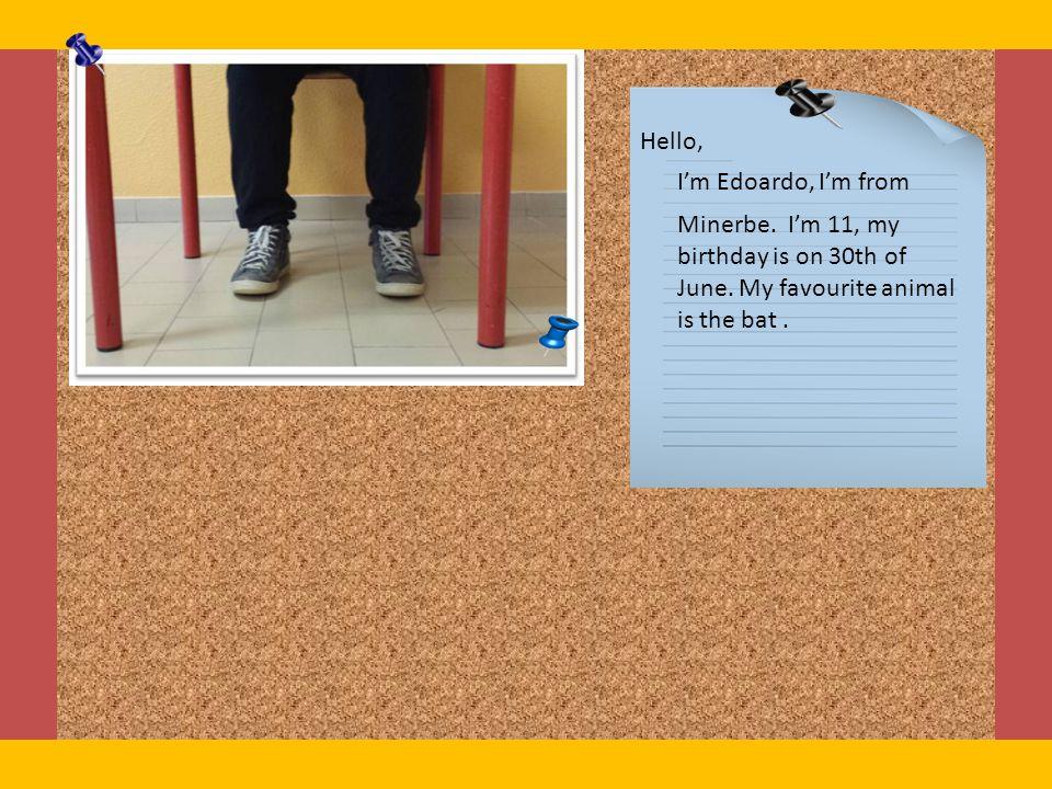 Hello, I'm Edoardo, I'm from. Minerbe. I'm 11, my birthday is on 30th of June.
