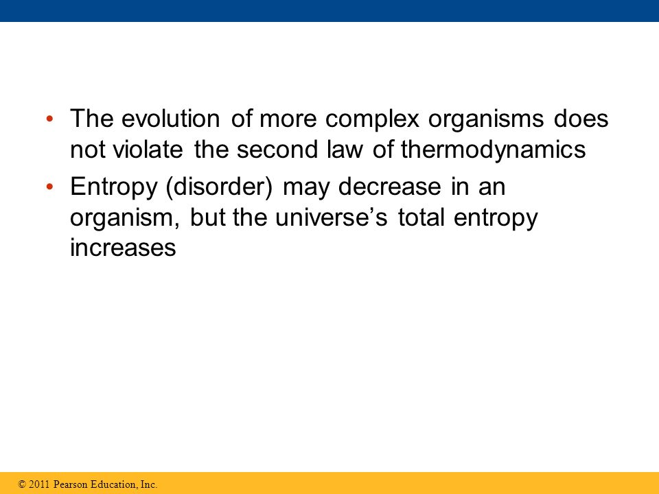 The evolution of more complex organisms does not violate the second law of thermodynamics