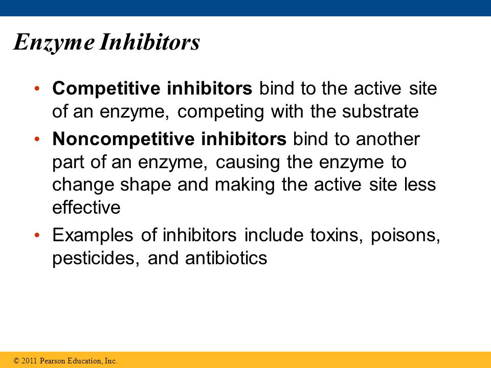 Enzyme InhibitorsCompetitive inhibitors bind to the active site of an enzyme, competing with the substrate.