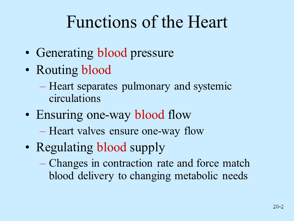 Functions of the Heart Generating blood pressure Routing blood