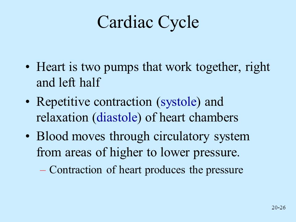 Cardiac Cycle Heart is two pumps that work together, right and left half.