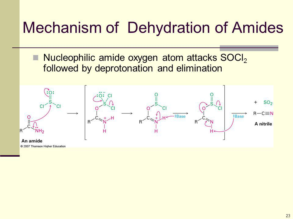 Mechanism of Dehydration of Amides