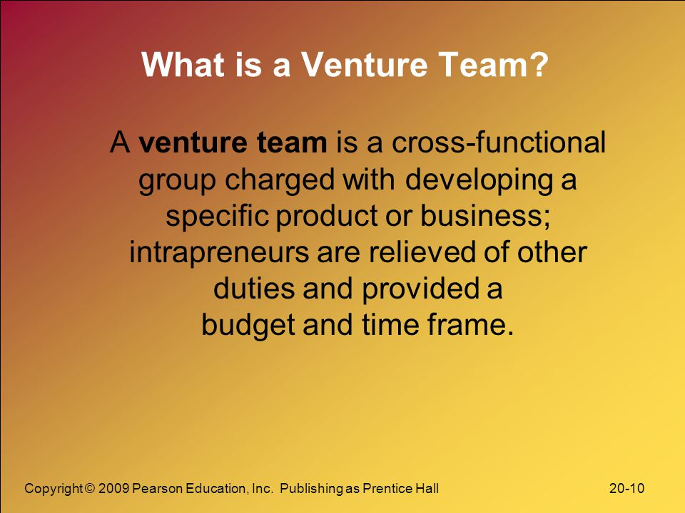 What is a Venture Team