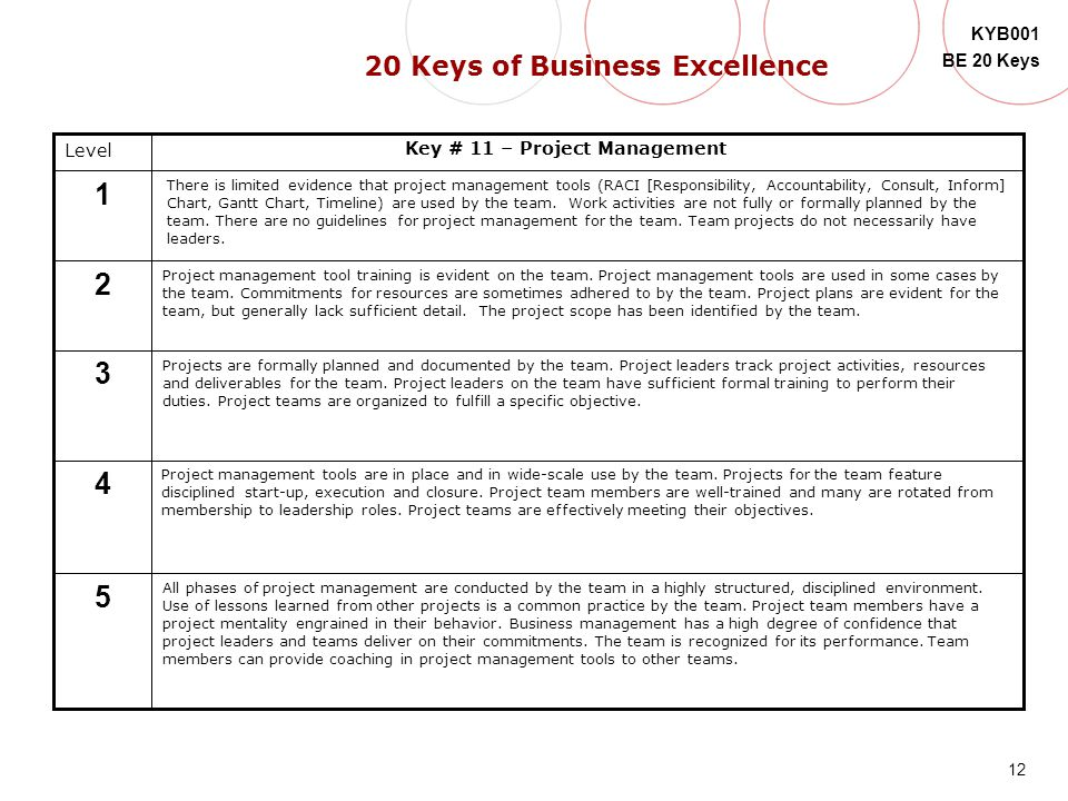 20 Keys of Business Excellence Key # 11 – Project Management
