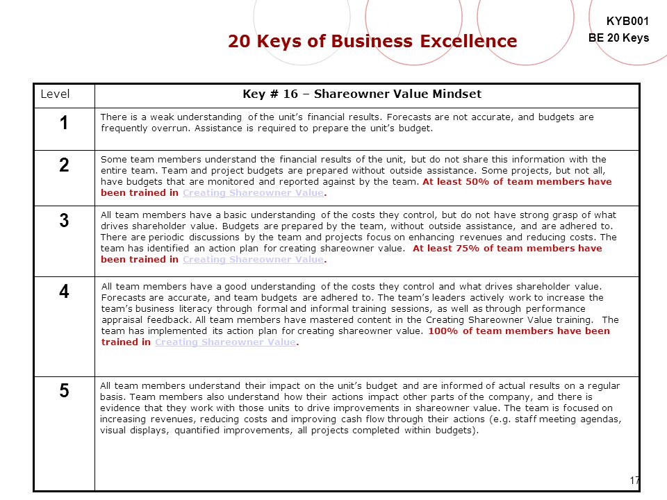 20 Keys of Business Excellence
